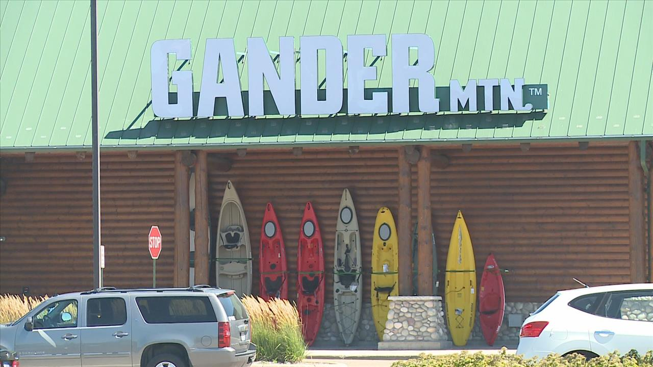 photograph relating to Gander Mountain Printable Coupon named Gander mountain 20 off / Celebration town totally free shipping and delivery no bare minimum