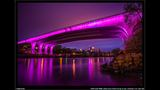 PHOTOS: Twin Cities goes purple for Prince