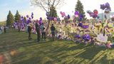 Could Paisley Park become a Prince museum? Maybe not