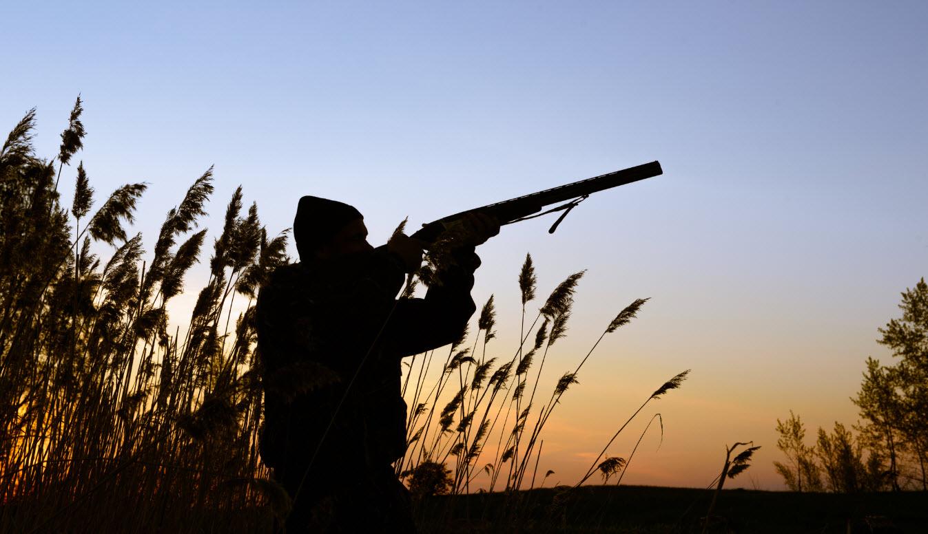 Minnesota Dnr Pushing For Hunting Fishing Fee Hikes